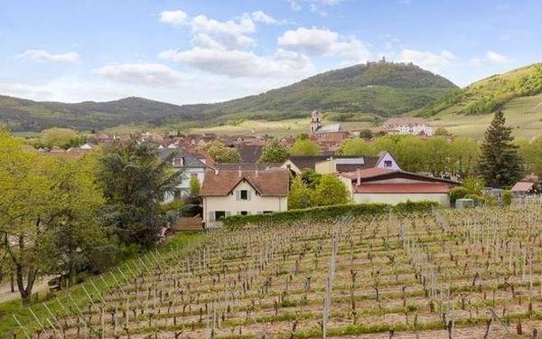 Malebné Alsasko: romantický pobyt pro 2 ve vinařském ráji 3 dny / 2 noci, 2 os., snídaně5