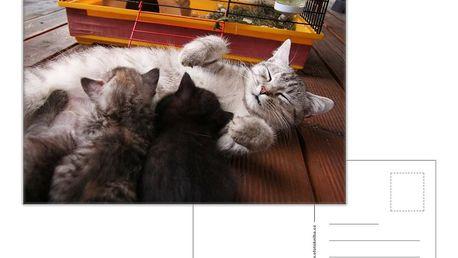 16 ks pohlednic formátu A6 z vašich vlastních fotografií