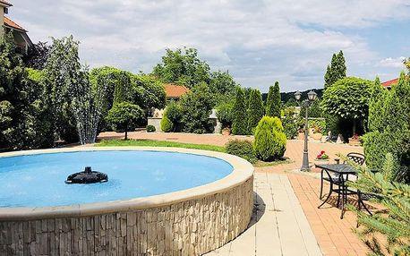 Odpočiňte si na Slovensku v penzionu Pulse blízko termálních lázní