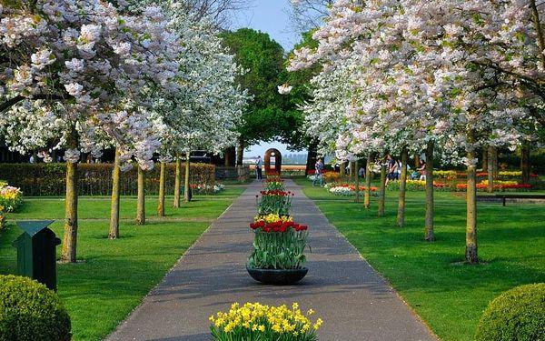 Výlet do největšího květinového parku Keukenhof a Amsterdamu
