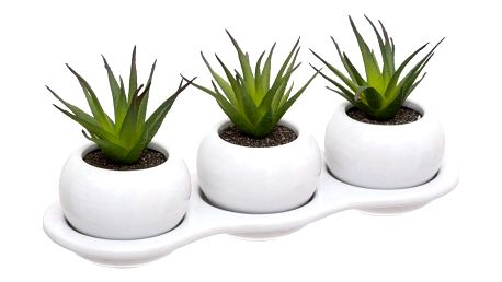 Atmosphera Sada 3 umělých rostlin v květináči SUCLENTS, bílá
