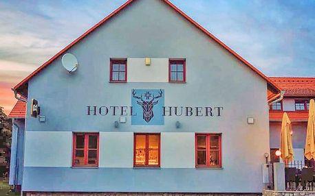 Jižní Čechy v hotelu ve Slavonicích s polopenzí + ochutnávka specialit z bizona