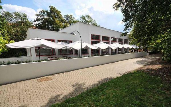 Degustační menu pro dvě osoby v restauraci Pavillon v Brně2