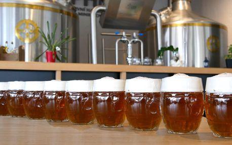 Metr piv v Havířovském Pivovaru