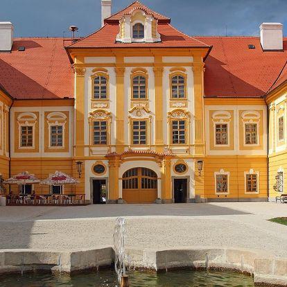 Odpočinek v jižních Čechách s polopenzí a vínem