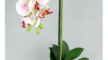 Orchidea v betonovém květnáči, barva bílo-růžová. Květina umělá. VK-1250