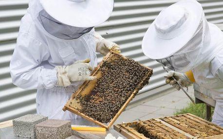 Včelařem na zkoušku přímo na včelí farmě