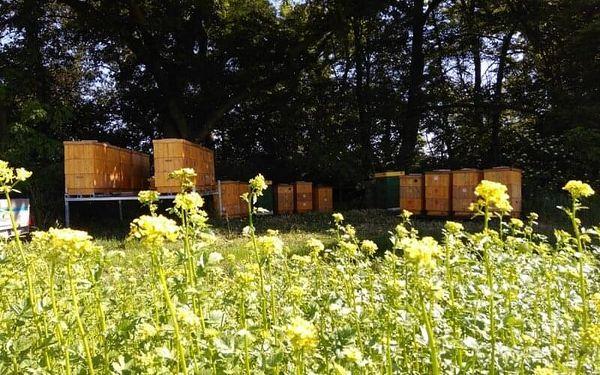 Včelařem na zkoušku na včelí farmě pro dva2