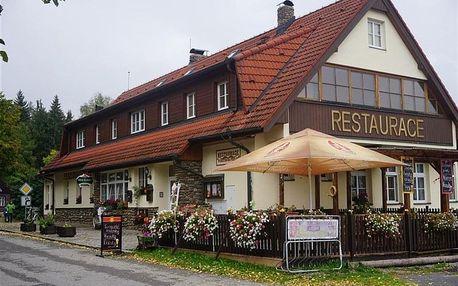 Javorník - PENZION NA PODLESÍ, Česko