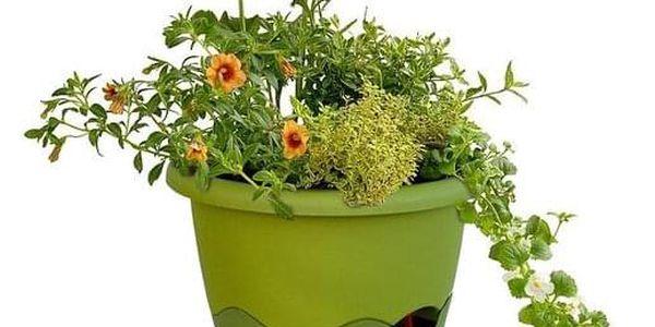 Samozavlažovací závěsný květináč Mareta, zelená, 25 cm, Plastia4