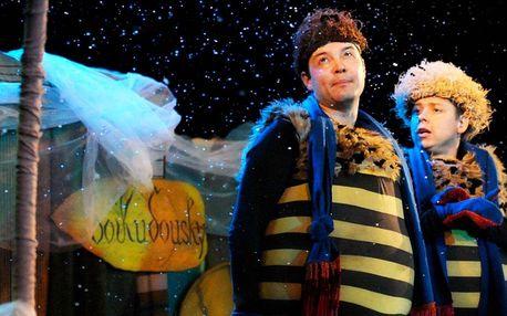 Vstupenka na Zimní příhody včelích medvídků