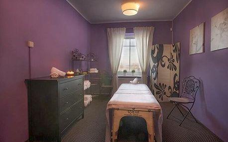 CHKO Křivoklátsko v Hotelu Jesenice *** s polopenzí a zmrzlinou + 50% slevou na procedury