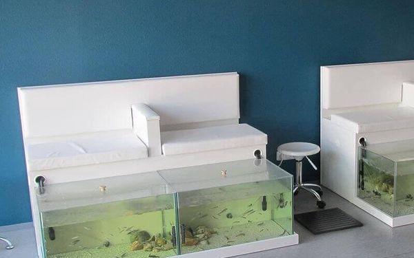 Netradiční péče: Rybí pedikúra Garra Rufa3