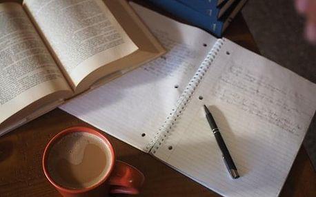 Český jazyk a literatura - přípravný kurz na střední školy