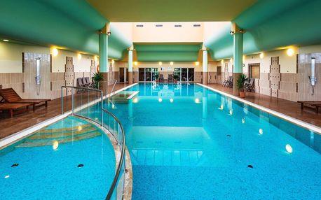 Znojmo v mezinárodním hotelu Savannah**** s polopenzí a wellness