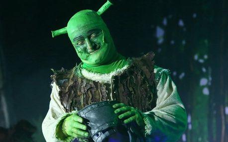 Vstupenka na rodinný muzikál Shrek v Liberci