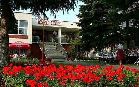 Dudince - Hotel FLÓRA, Slovensko