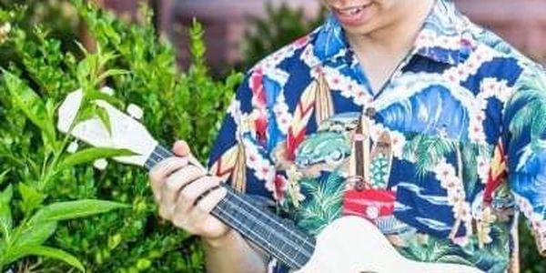 Slož si své ukulele3