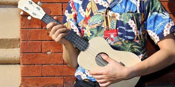 Slož si své ukulele5