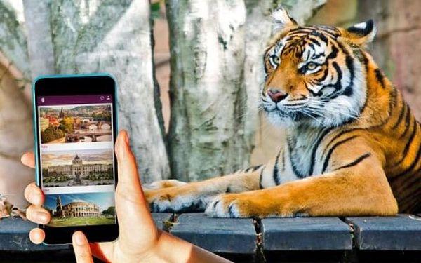 Pražská Zoo - venkovní úniková hra4