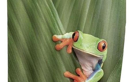Sprchový závěs, textilní, Frog, 180x200 cm, WENKO