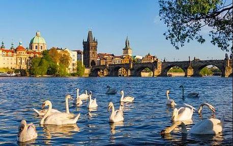 Skvělé atrakce v Praze si vychutnáte při pobytu v centru v 4 * hotelu Seifert. Celoročně.