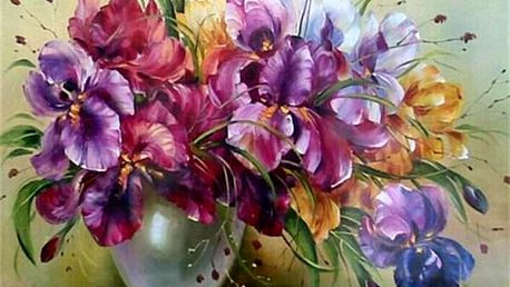 Malování podle čísel B04872 - dodání do 2 dnů