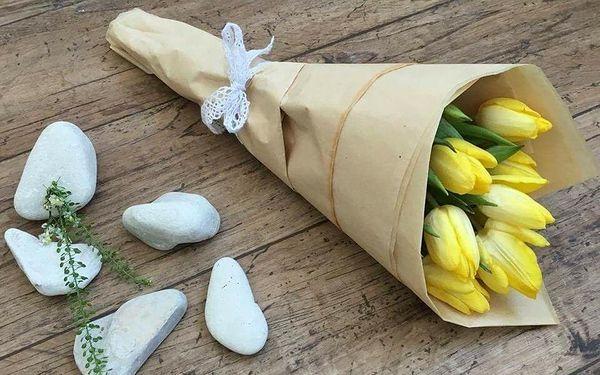 9 tulipánů se zelení5