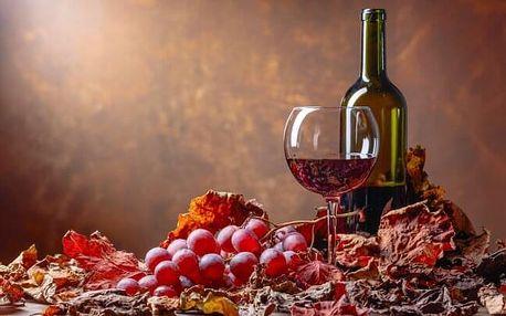 Jižní Morava v Penzionu Retro Vrbovec s neomezenou konzumací vína a polopenzí