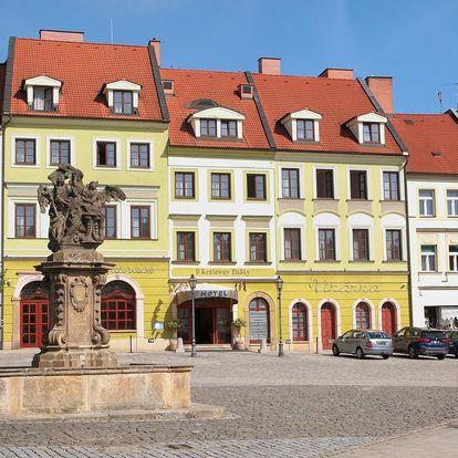 Hradec Králové: Hotel U Královny Elišky