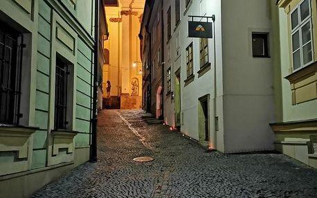 Olomouc: Hotel Penzion Na Hradě