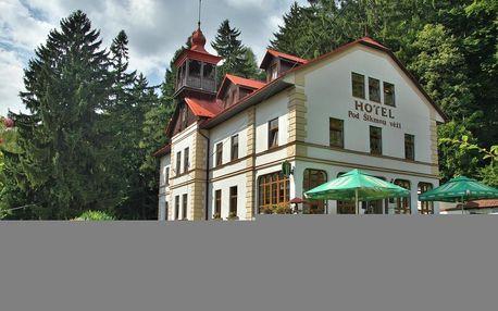 Prachovské skály: Hotel pod Šikmou Věží