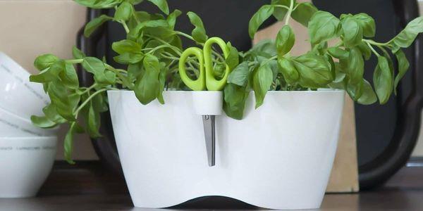 PROSPERPLAST LIMES DUBLO dvojkvětináč na bylinky s nůžkami 2,5l, bílá DLD2503