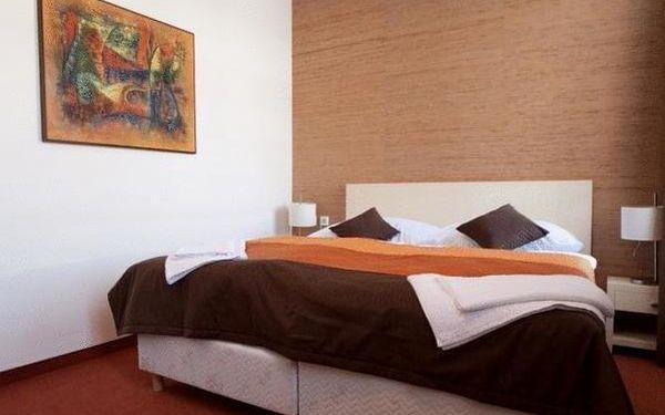 Dvoulůžkový pokoj Standard s manželskou postelí nebo oddělenými postelemi4