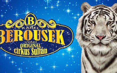 Cirkusová show Karla Berouska v Kroměříži