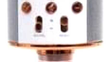Karaoke mikrofon WS-858 rosegold