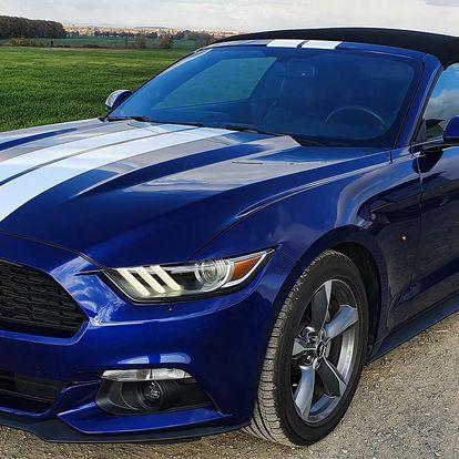 Zapůjčení nadupaného Fordu Mustang Cabrio na 1 den