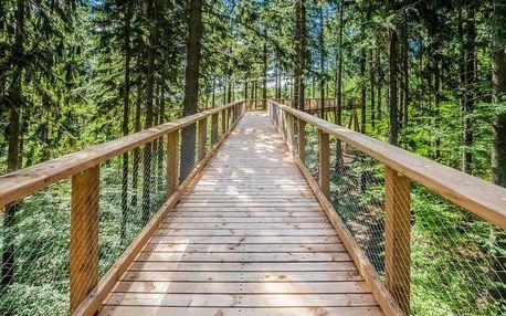 Horský pobyt se vstupem na Stezku korunami stromů a saunou (2 noci) ve Svobodě nad Úpou