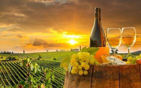 Znojmo: vinařský pobyt v Hotelu Bax *** s polopenzí a slevou do termálů