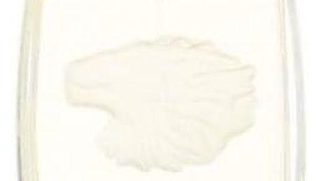 Lalique Pour Homme 125 ml parfémovaná voda pro muže