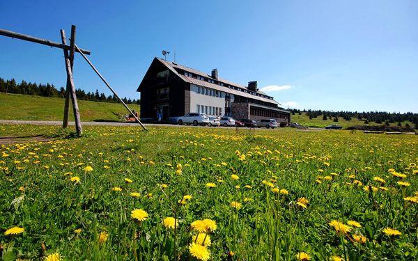 Letní dovolená na Dvorské boudě v Krkonoších. Jen 7 km od Sněžky. Sauna v ceně!