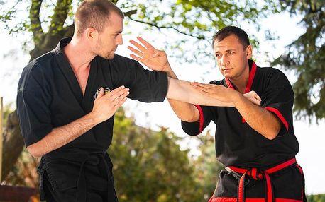 Kung fu - trénink s Mistrem u vás doma