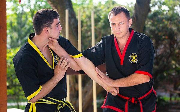 Kung fu - trénink s Mistrem u vás doma | Praha (u vás doma) | Celoročně. | 2 hodiny.2