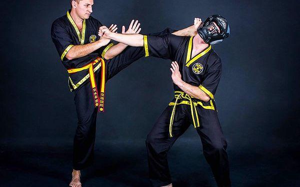 Kung fu - trénink s Mistrem u vás doma | Praha (u vás doma) | Celoročně. | 2 hodiny.4
