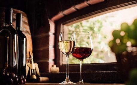 Domácí degustace vín + bedna šestidruhů vína