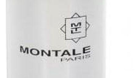 Montale Paris Chocolate Greedy 100 ml parfémovaná voda tester unisex