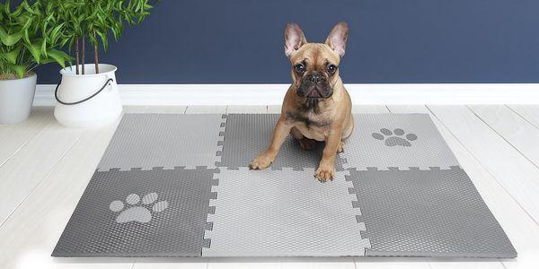 Skladné a odolné podložky pro psy na doma i ven