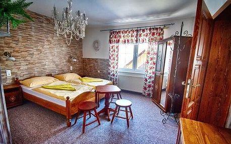 Belianské Tatry v Penzionu Šilon se snídaní a vínem + slevy do wellness, aquaparků i na půjčení kol
