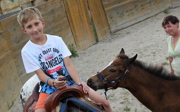 Návštěva zvířat na ranči s výkladem o chovu a výcviku2