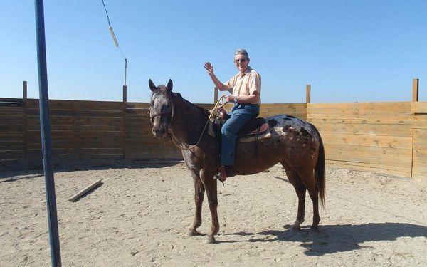 Návštěva zvířat na ranči s výkladem o chovu a výcviku3